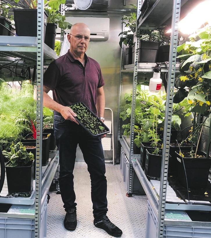 Im Gemüsecontainer kommt  die Erntezeit viel früher