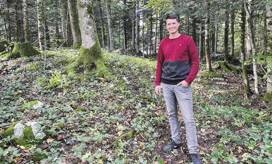 Oberhalb von Schwyz soll ein Waldfriedhof entstehen