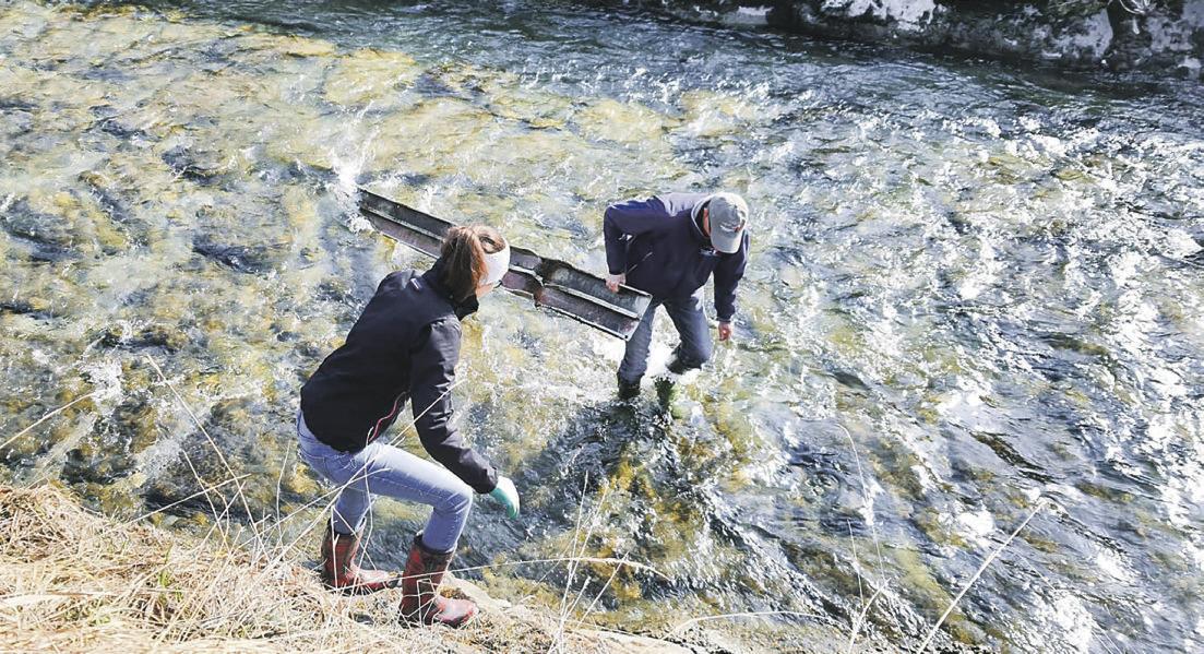 Gross und Klein im Einsatz für ein sauberes Sihlseeufer