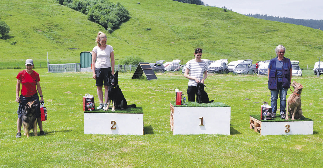 Hundesport in Rothenthurm